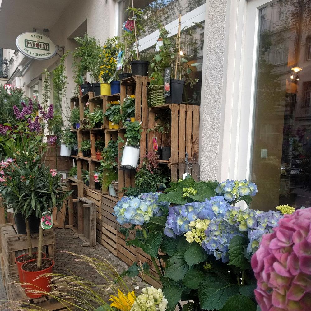 Prenzlauer Berg flower market. Hydrangeas. Berlin Interior Designer Jamie House Design