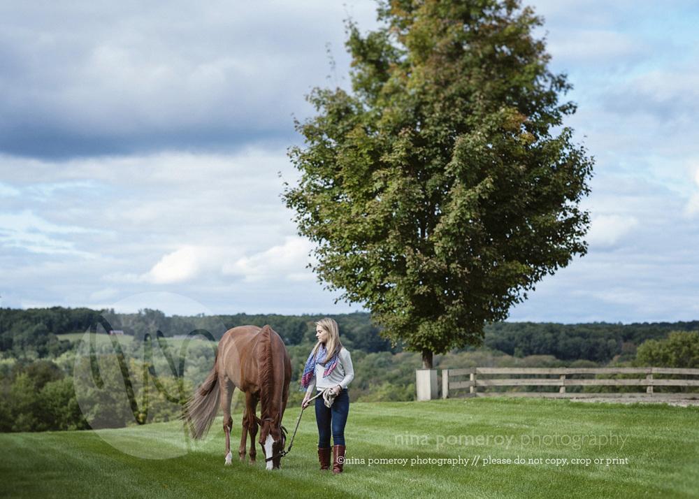 danville photographer horse portraits ©ninapomeroy.com
