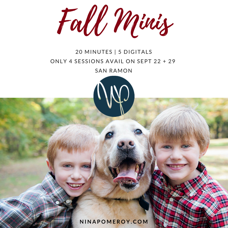 fall-mini-session-family-portraits-nina-pomeroy-photographer.png