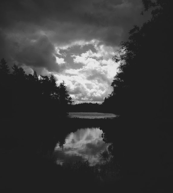 Tarn Hows, Cumbria. One of my iPhone photos featured on the Big World Picture blog