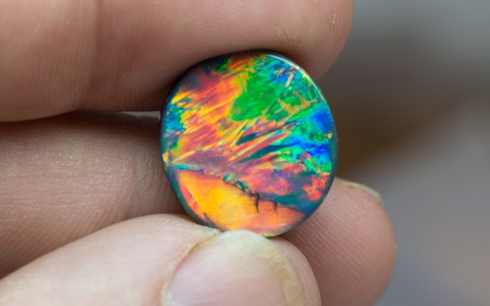 Read about Michael's love of Opal