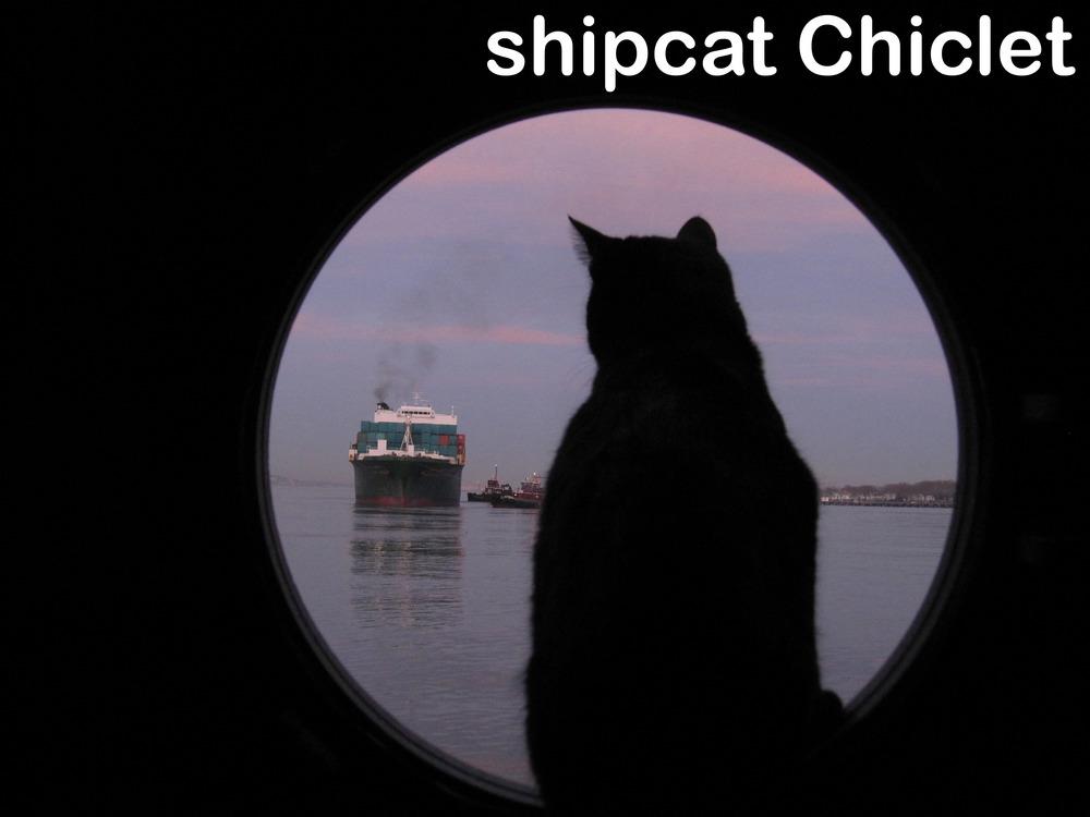 10 100407 NSCSA ship departs Pier 10 014 w-caption.jpg