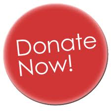 DONATE NOW BUTTON.jpg