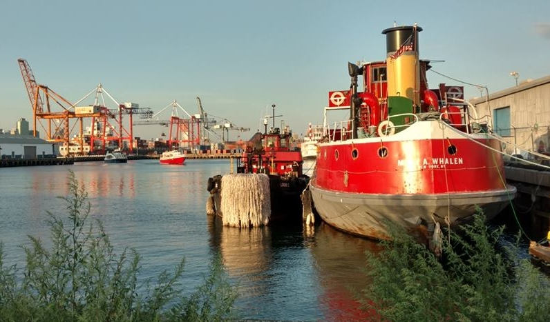 container ship, ferry, tour boat, replica paddle wheeler and two re-purposed oil tankers.