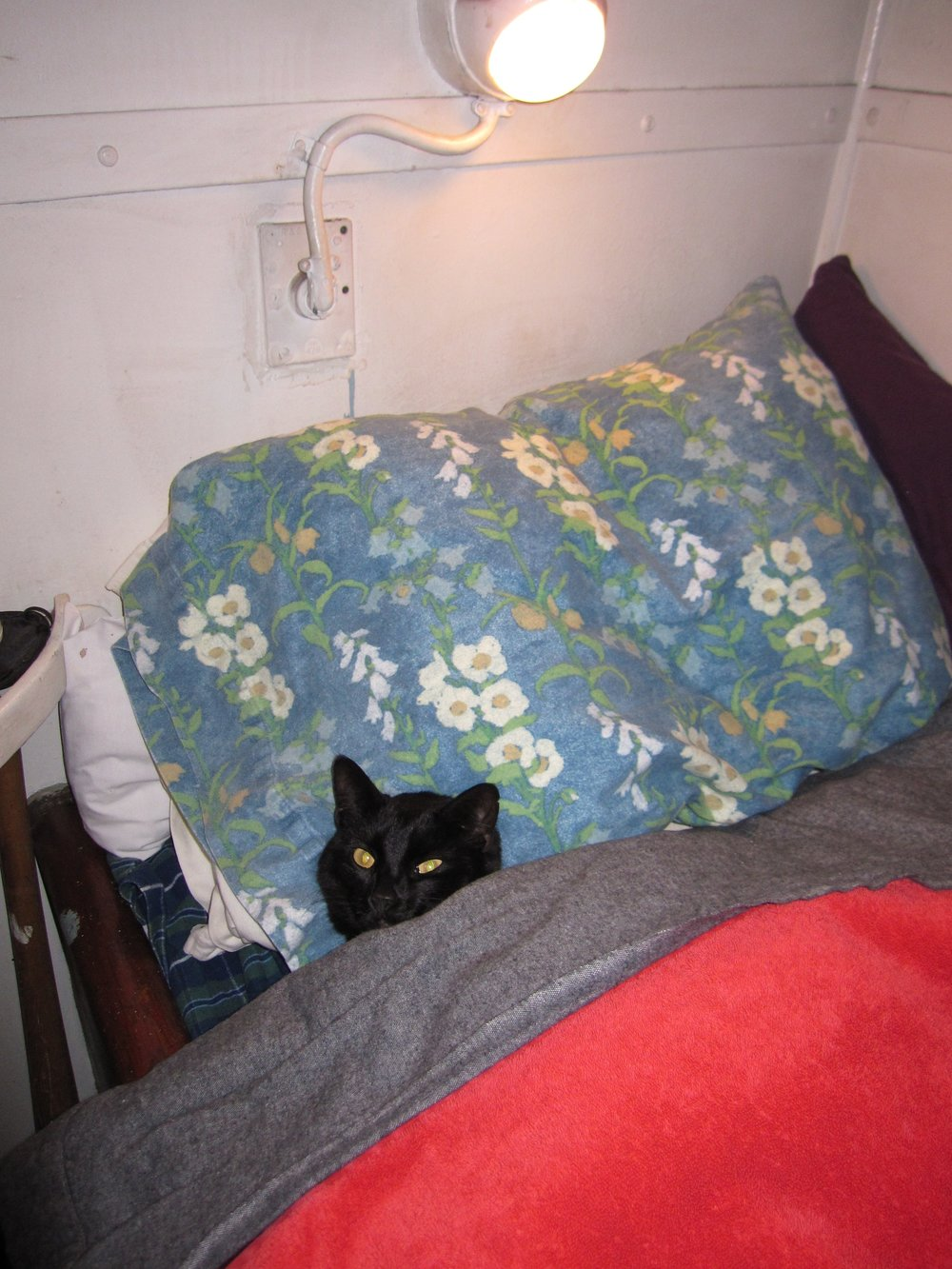 120304 Chiclet_Under-Covers 006.jpg