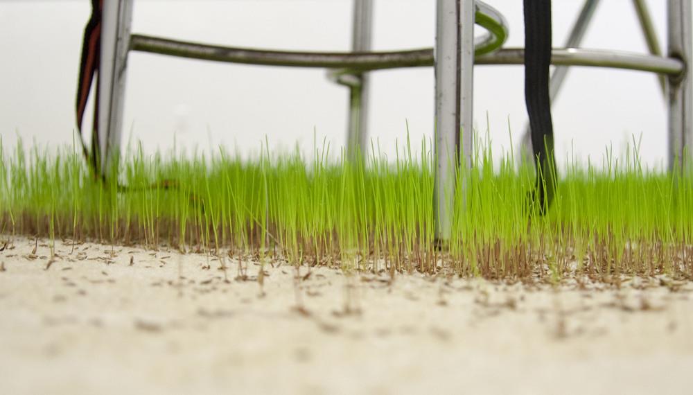 Grass detail2.jpg