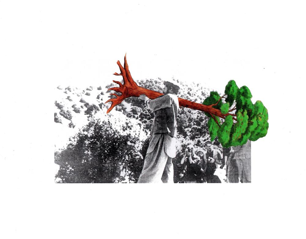 treecollage.jpg