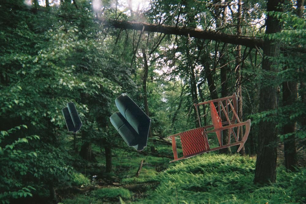 chairsforest.jpg