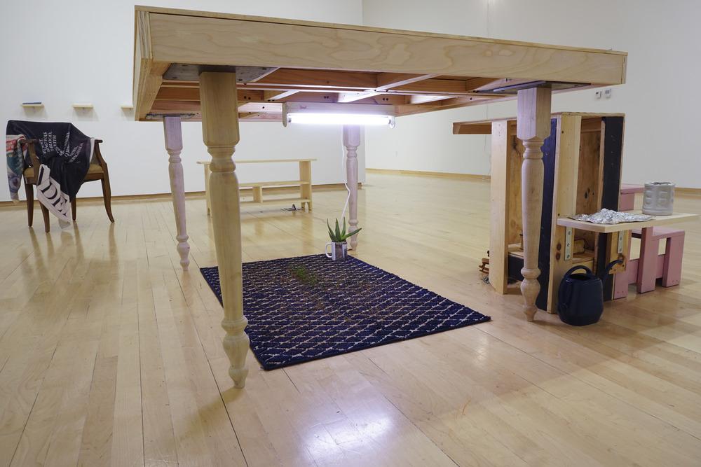 Nugent_Social_Carpet.jpg