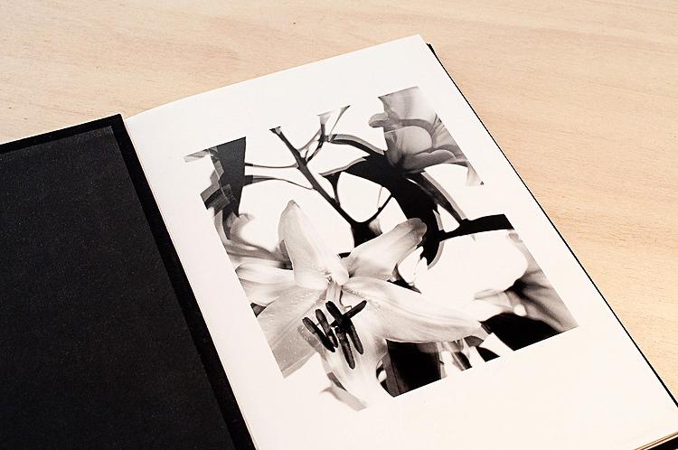 Il processo di stampa artigianale ai sali d'argento è espressione, oggi più che mai, di una nobile pratica artigiana e artistica .La versatilità del materiale sensibile su cui si stampa permette di caratterizzare in maniera unica l'estetica del lavoro fotografico e di ottenere immagini in bianco e nero senza eguali.  Il nostro laboratorio è dotato di un ingranditore digitale di nuova generazione, il DEVERE 504S, che permette di esporre le immagini da file sui tradizionali supporti di carta fotografica agli alogenuri d'argento.  Questo innovativo metodo di stampa permette di unire la versatilità della ripresa fotografica digitale alla lavorazione tradizionale del materiale cartaceo in camera oscura e di mantenenre inalterato il processo di sviluppo manuale della stampe con metodo chimico.  Le stampe così ottenute, sono caratterizzate da una gamma tonale straordinariamente estesa e presentano una profondità nelle ombre ed una brillantezza nelle alte luci del tutto analoghe alle tradizionali stampe da negativo.  CARTA utilizzata:   ILFORD MULTIGRADE RC IV è una carta politenata a contrasto variabile di alta qualità, con una base bianco brillante. Il tono dell' immagine è neutro sia alla luce del giorno che alla luce artificiale, con superficie lucida o perla, da 190g/m2