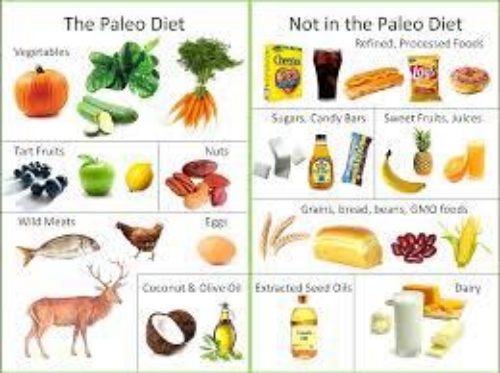 Foods in the Paleo Diet