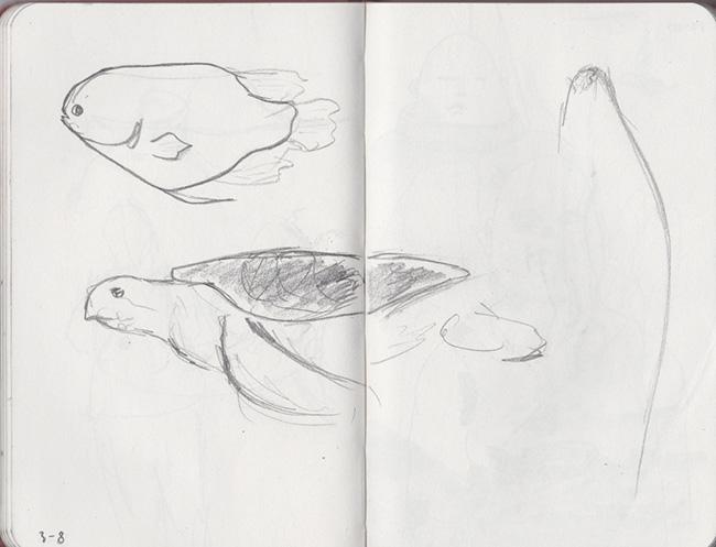 drawings_moleskin-138.jpg