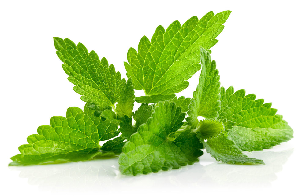 Mint-Leaves.jpg