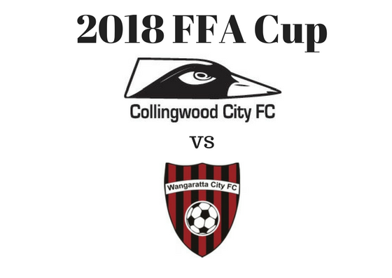 2018 FFA Cup