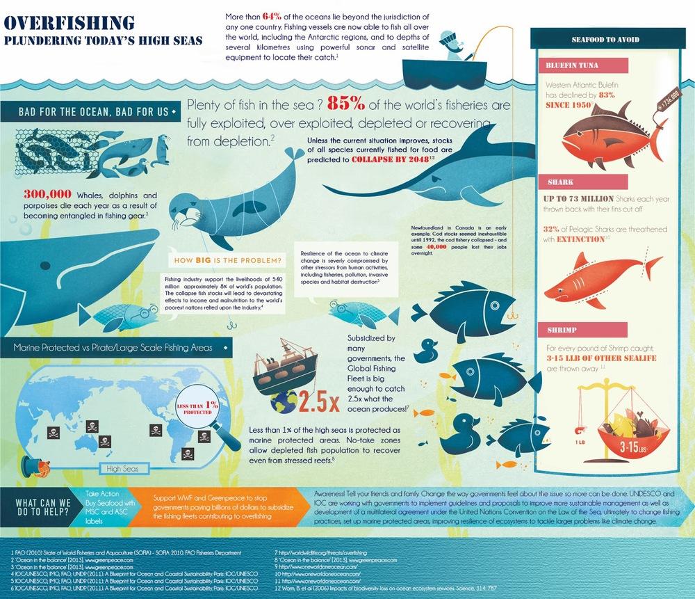 overfishing1.jpg