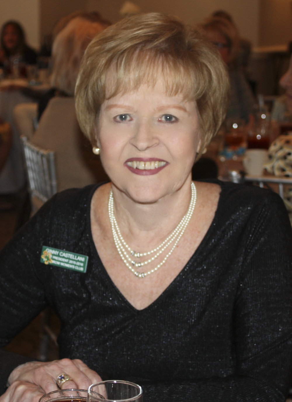 Ginny Castellani, Parliamentarian