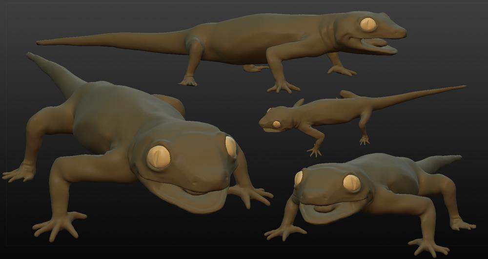 lizard3.jpg