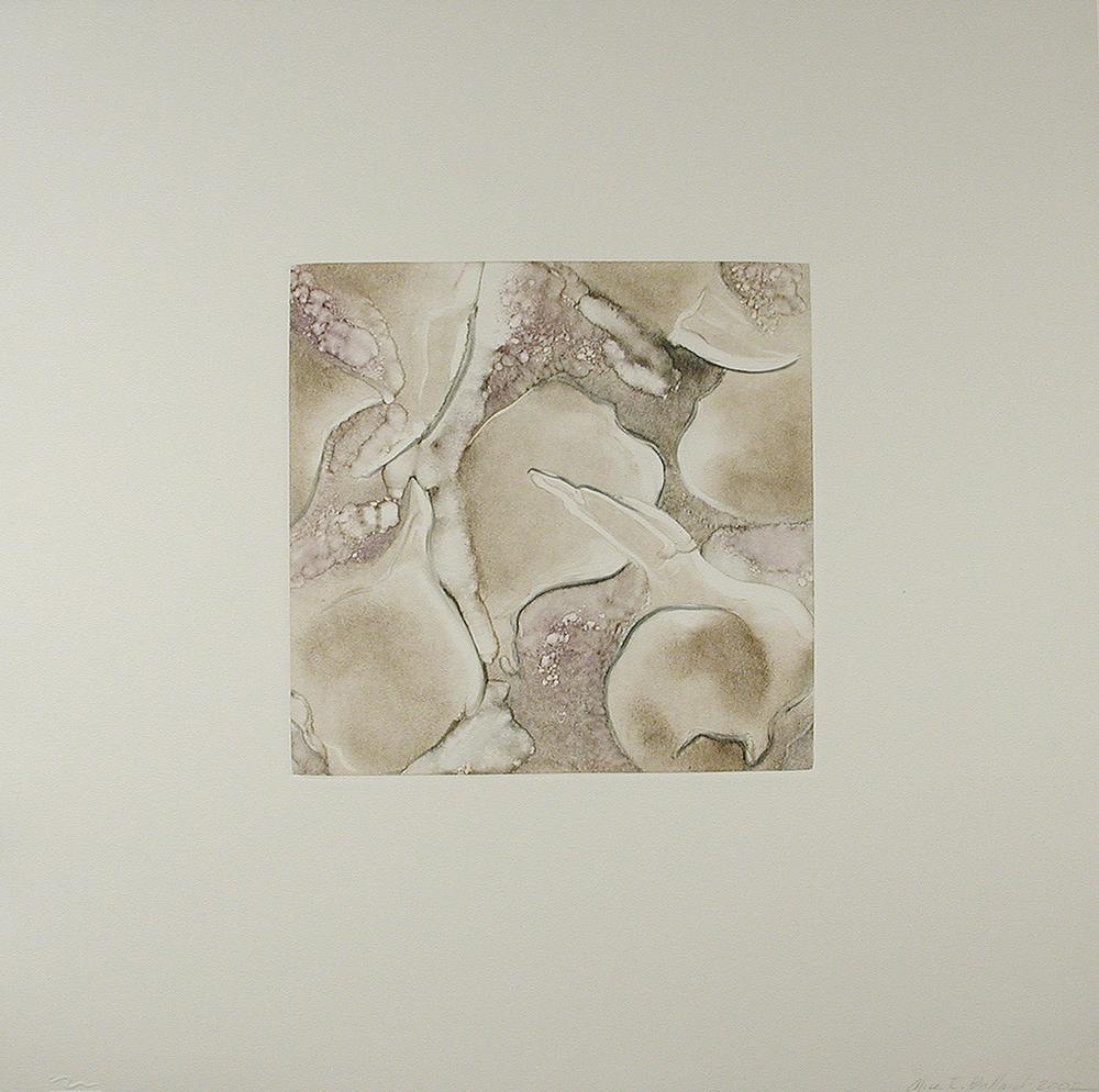 Narcissus VI  2002.jpg