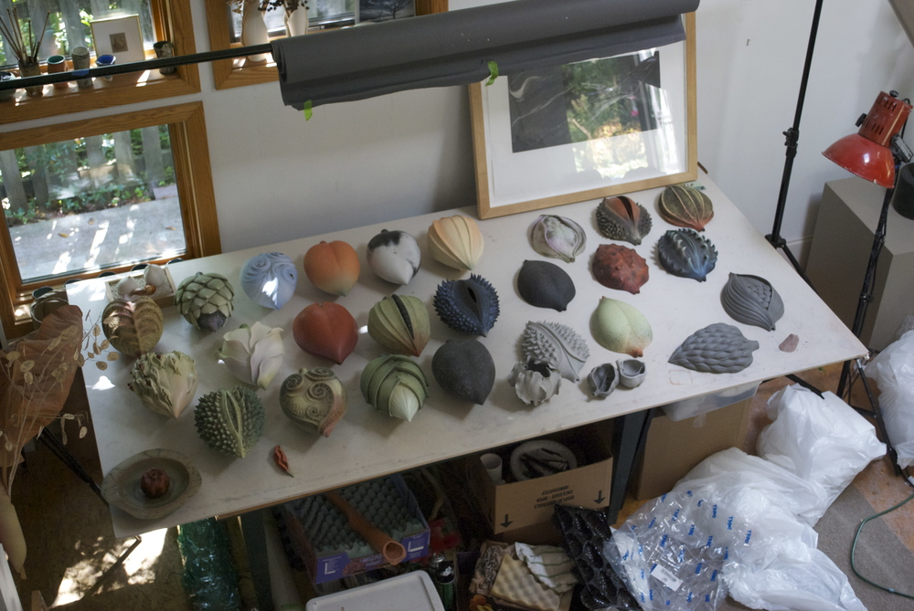 View of my studio - Pods prior to installation at the Greenville County Museum of Art