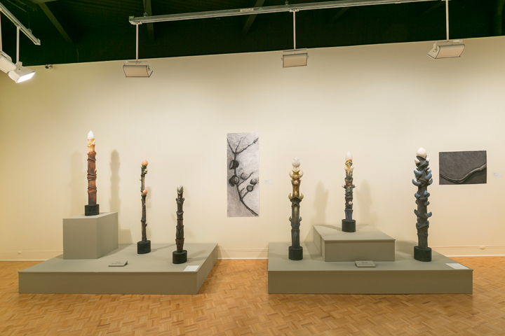 Tree Totem Series, working drawings, GCMA, Alice Ballard's solo show     georgeleephotography.com