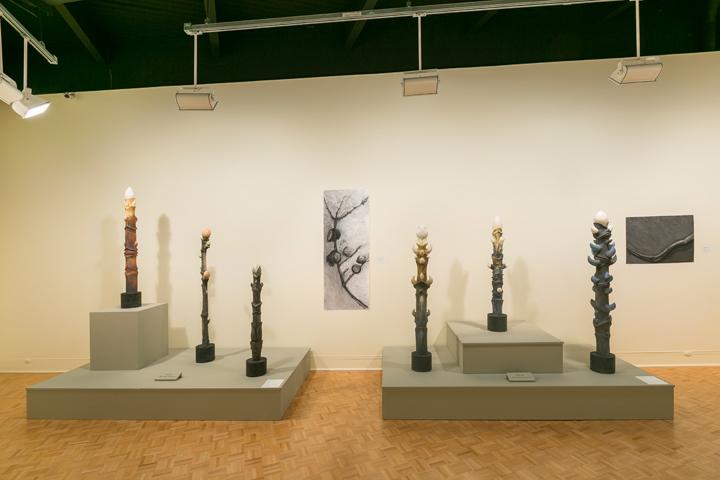Tree Totem Series, working drawings, GCMA, Alice Ballard's solo showgeorgeleephotography.com