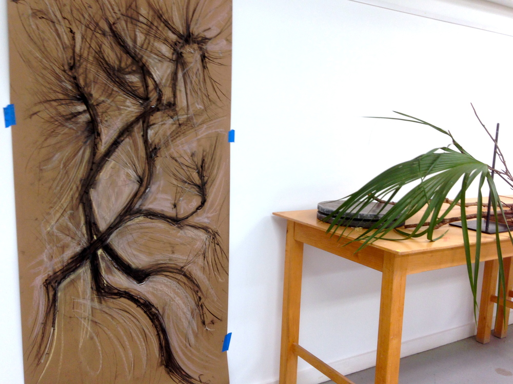The finished drawing of the pine branches, along with the other drawing became the bookends for a still-life of my red earthenware crepe myrtle containers with branches, leaves, pine cones and a palmetto fan. This arrangement along the back wall became the central element of the installation I was trying to create inside the Barn studio where I was working.