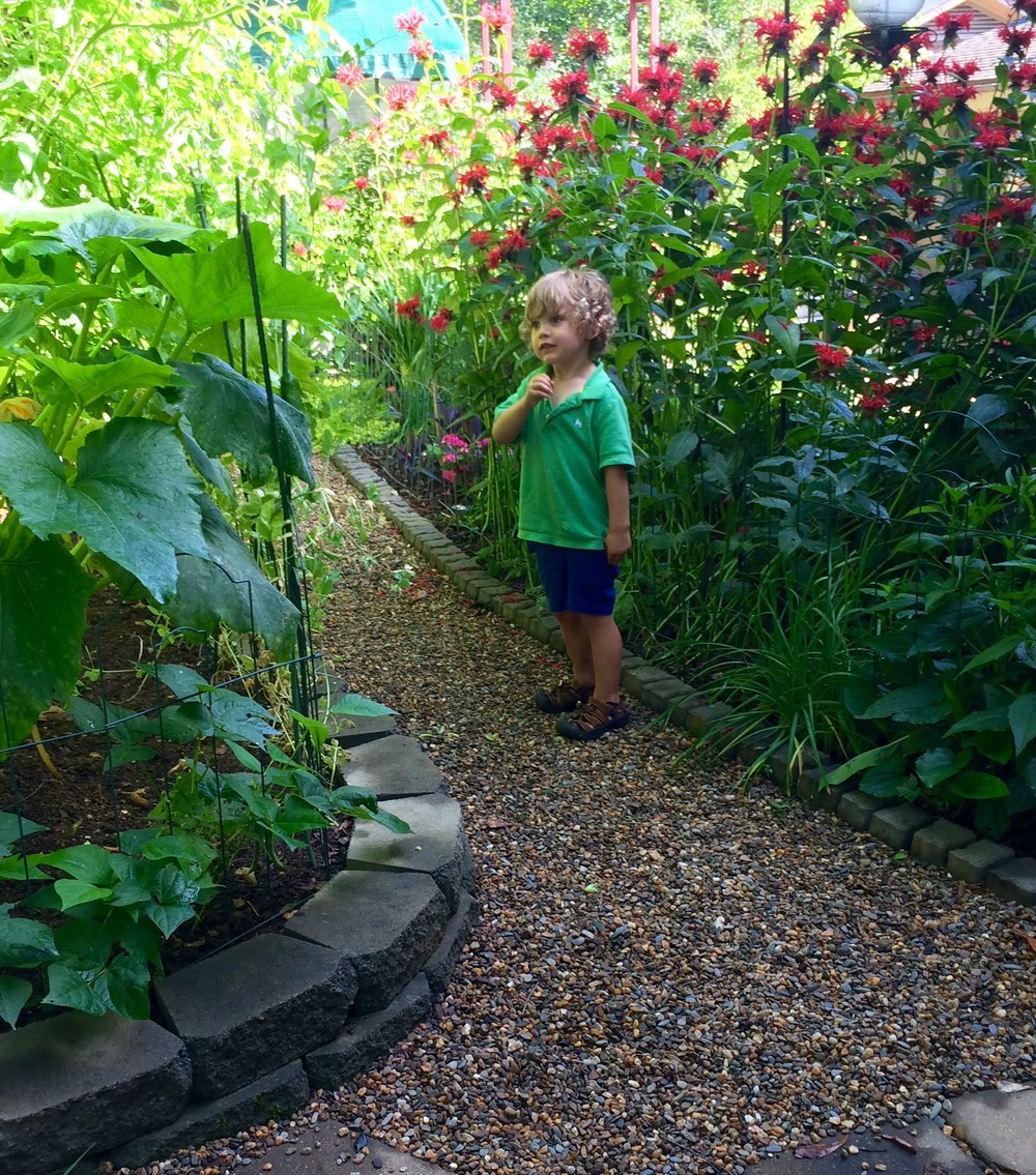 Charlie in Mimi's garden......His grandfather Charlie would love this...