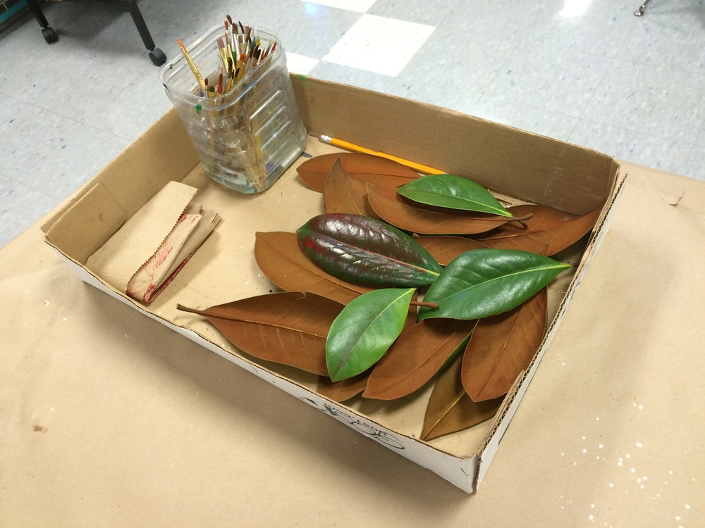 Can you believe that beneath those amazing little paintings are magnolia leaves just like the ones in this box? If only we could all start with a green and rust brown magnolia leaf and come out with a brilliant little painting.  I am completely and totally inspired by the results of my students' enthusiastic and unbridled creativity!!!!!!! Thank you 5th and 6th graders. I am one lucky art teacher!
