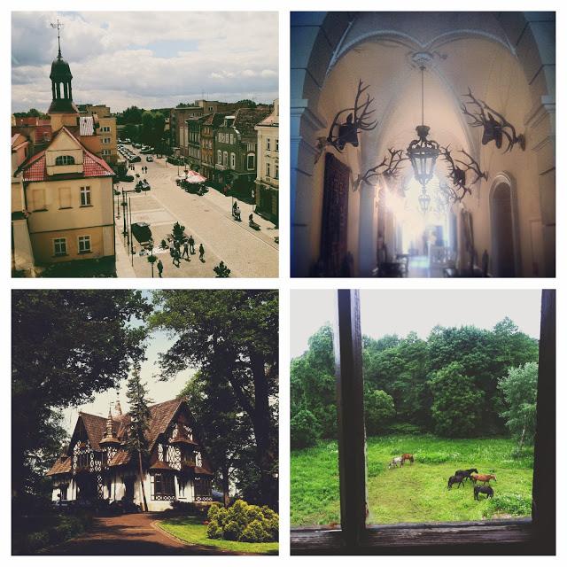 **collage.jpg