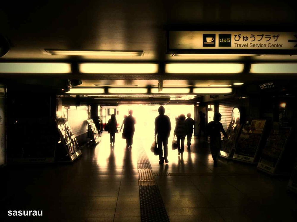 3517857-photo_by_camerakit.jpg