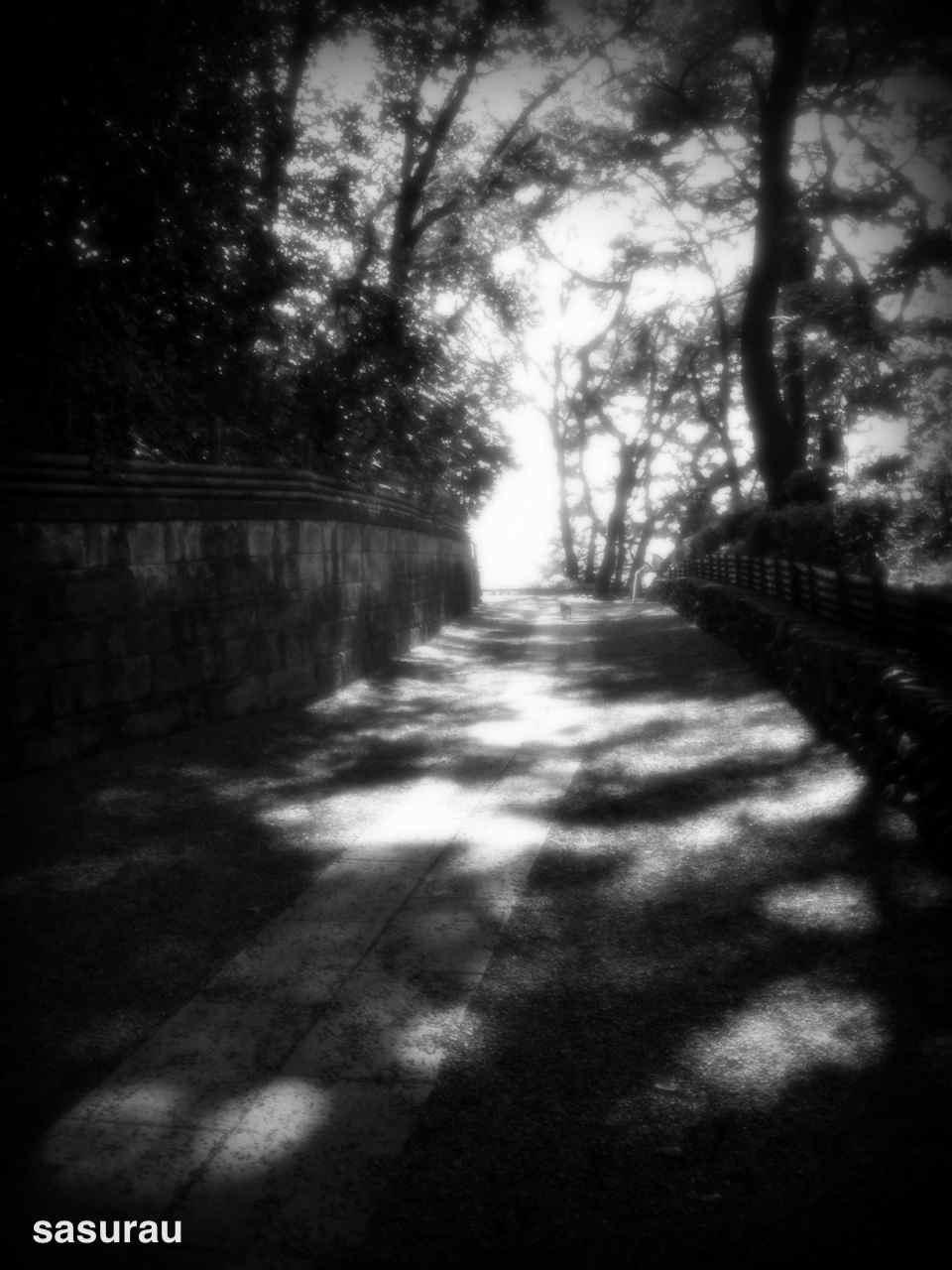 3707941-photo_by_camerakit.jpg
