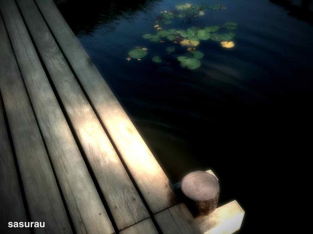 3752579-photo_by_camerakit.jpg