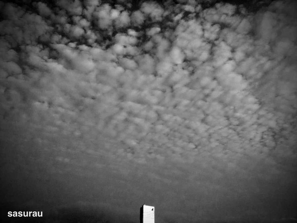 4010211-photo_by_camerakit.jpg