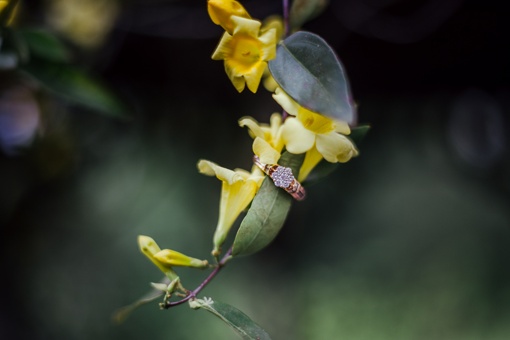 Cylburn-Arboretum-Engagement-Photos-Maryland-Lyn-Leland-Photography0154.jpg