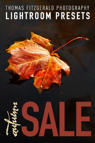 autumn-sale-website-banner.jpg
