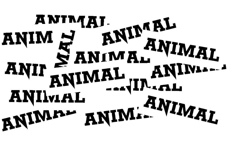 ANIMAL_STICKERS.png