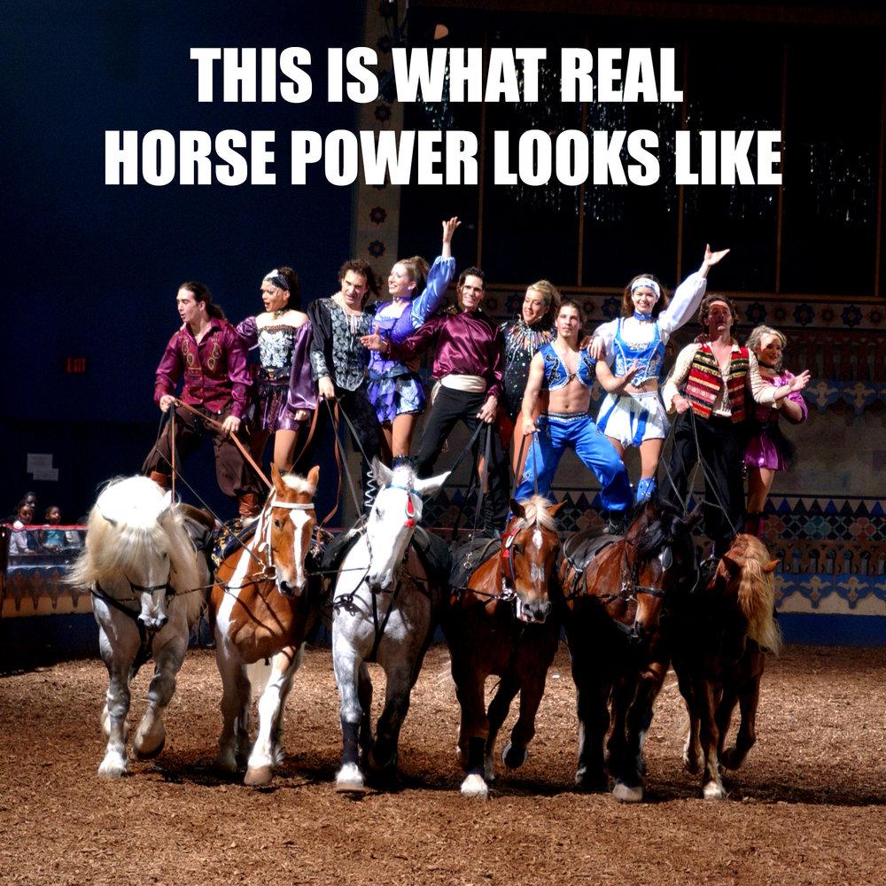 horse_power.jpg