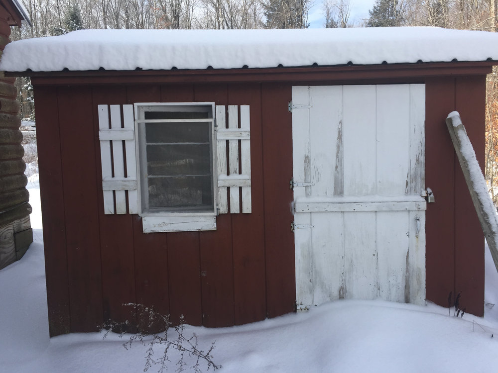 winter-shed.JPG
