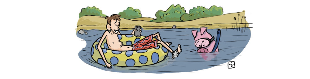 click on the snorkeling pig for the latest news and cartoons!