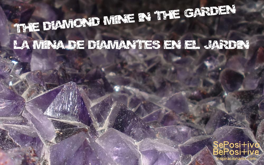 LA MINA DE DIAMANTES EN EL JARDIN.jpg