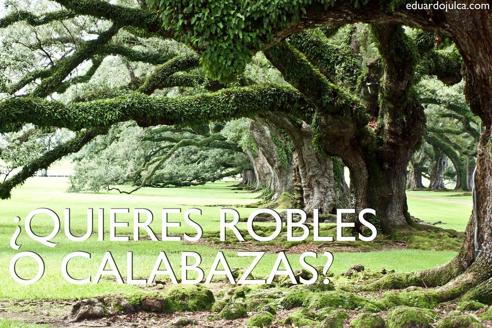 ROBLES O CALABAZAS.jpg