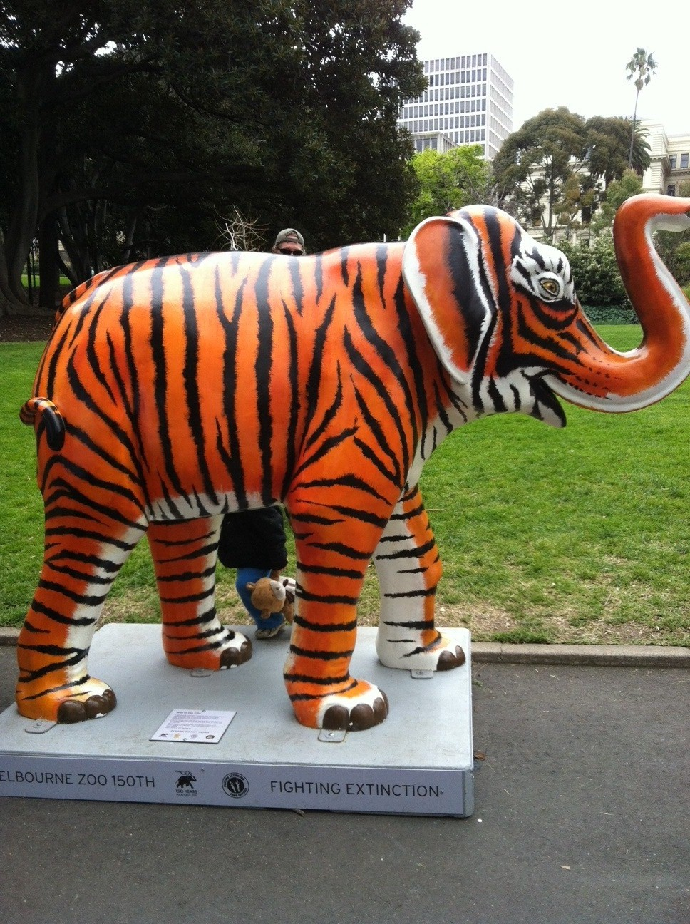Elephant in Treasury gardens.jpg