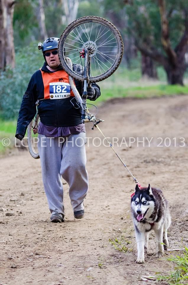 Home again, home again, jiggedy jig! Photo courtesy of LC Pet Photography.  https://www.facebook.com/lcpetphotography