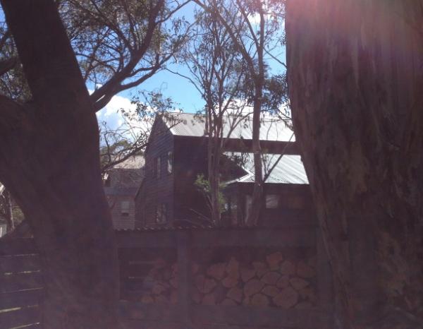 sunny back deck!