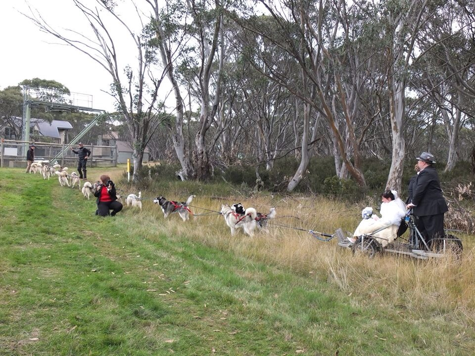 The amazing team at Australian Sleddog Tours who provided the rig, 12 spare dogs and 2 runners to take us away.