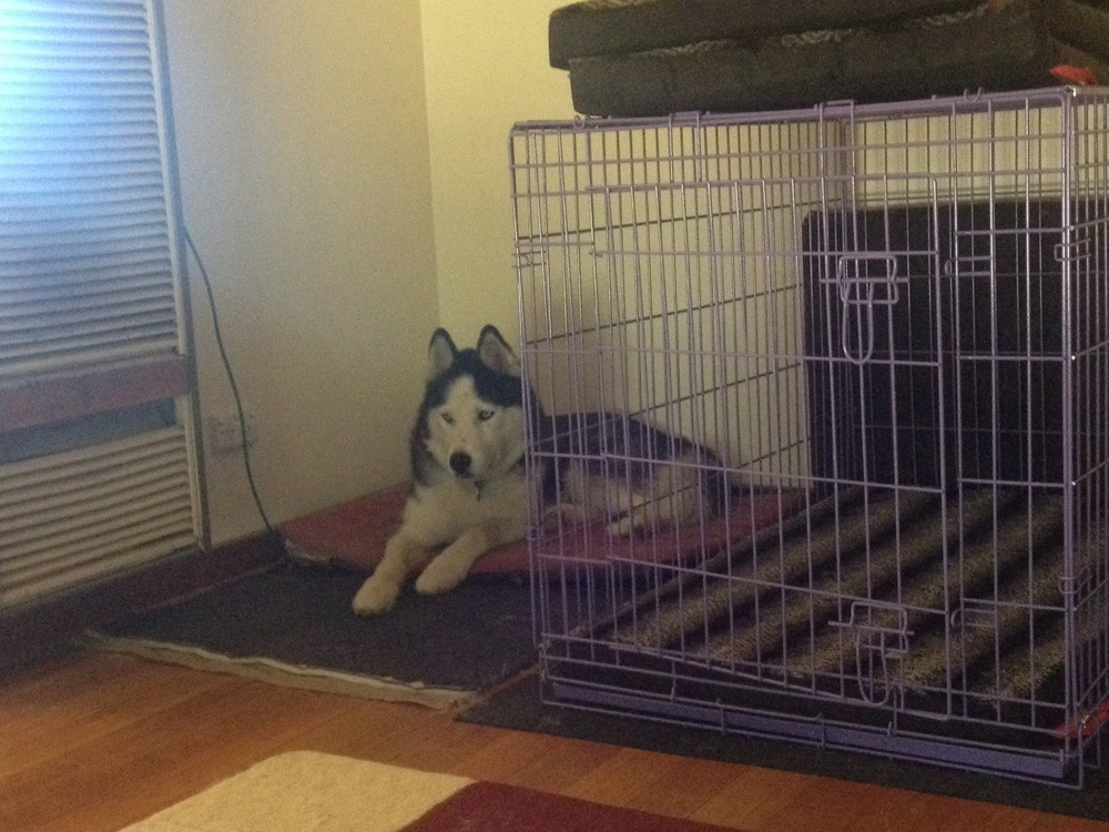 """This is where my crate goes... Wherever it's gone..."""