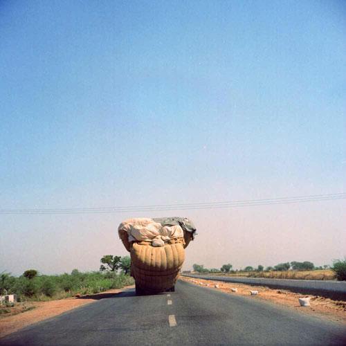Mushroom Truck - Bundi