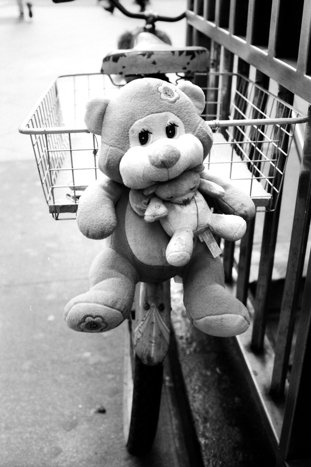 bicycle-midtown-stuffed-animal.jpg