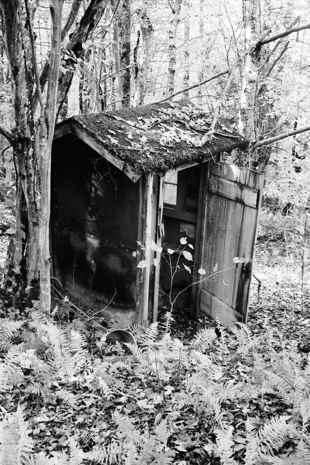 willowemoc-shed.jpg