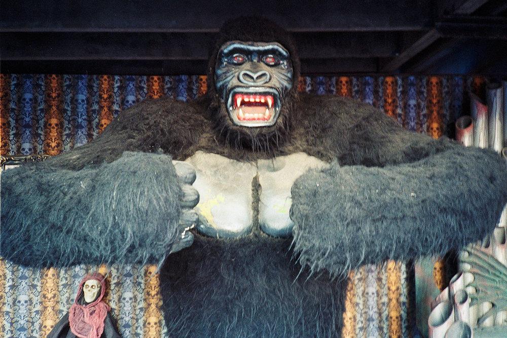 coney-island-gorilla.jpg